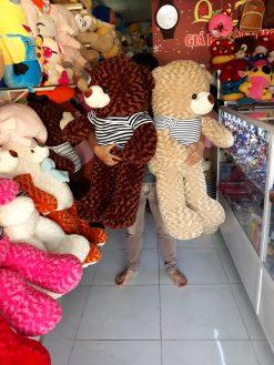 Gau Teddy 1m2