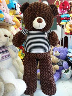 Gau Teddy 1m6